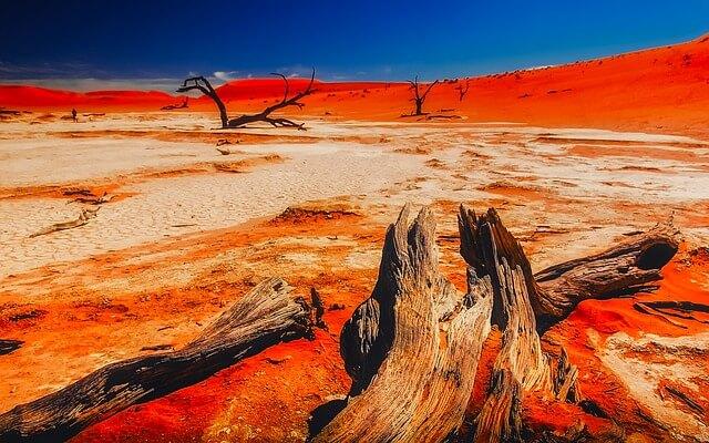 Namib Çölü