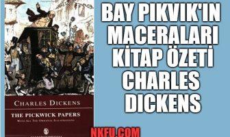 Bay Pikvik'in Maceraları