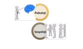 sosyoloji psikoloji