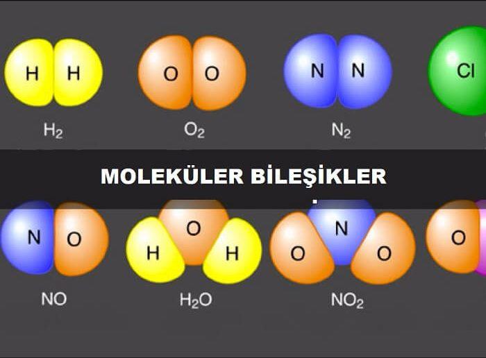 Moleküler Bileşikler