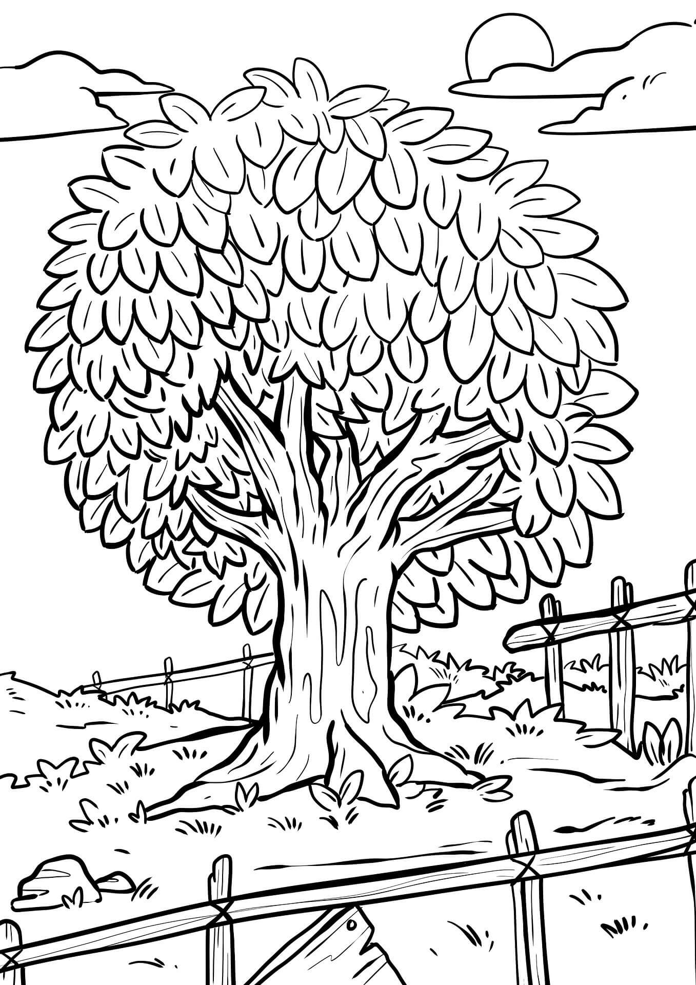 Sonbahar Mevsimi Boyama Sayfaları - Okul Öncesi Sonbahar Boyama Etkinlikleri